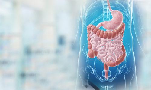 Gastroenterologjia